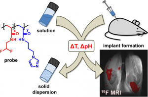 19F Magnetic Resonance Imaging of Injectable Polymeric Implants with Multiresponsive Behavior