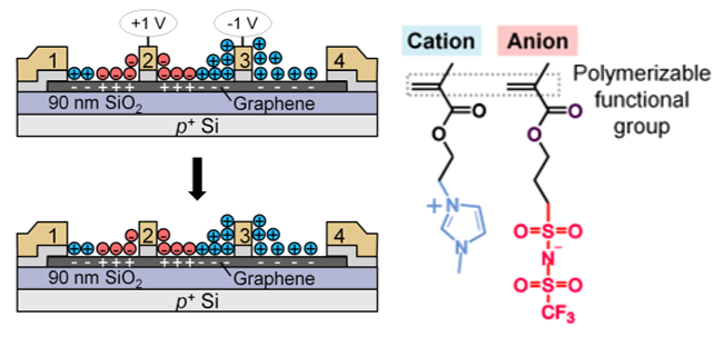 Ion-Locking in Solid Polymer Electrolytes for Reconfigurable Gateless Lateral Graphene p-n Junctions
