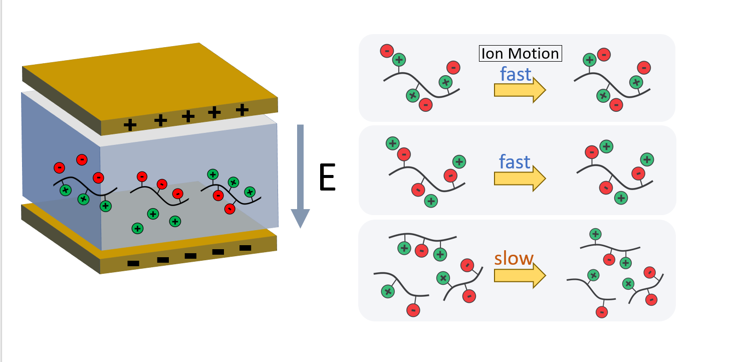 PREPRINT: Dynamics of Ion Locking in Doubly Polymerized Ionic Liquids